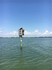 Nesting pair of Osprey - Vacant Land for sale at 8232 Little Gasparilla Is, Placida, FL 33946 - MLS Number is D5917030