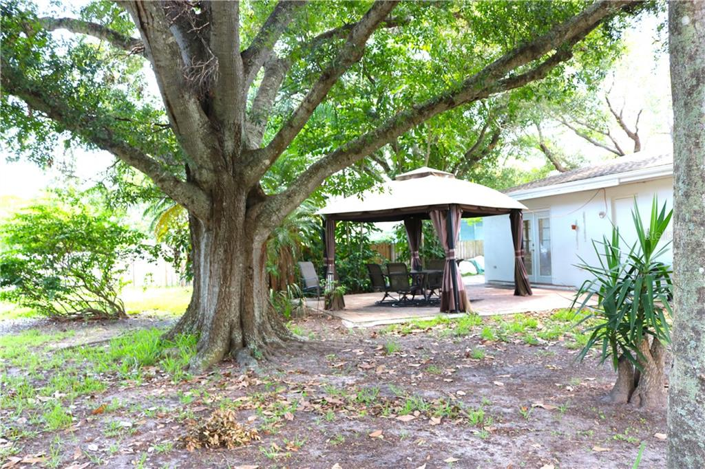 Beautiful tree canopy over the gazebo. - Single Family Home for sale at 2220 Pine Ter, Sarasota, FL 34231 - MLS Number is A4440562