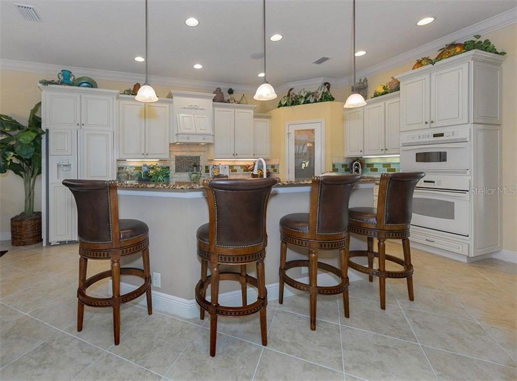 Breakfast bar, kitchen - Single Family Home for sale at 20122 Passagio Dr, Venice, FL 34293 - MLS Number is N5914419