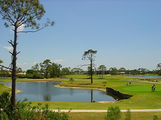 34+ Burnt store isles golf course info