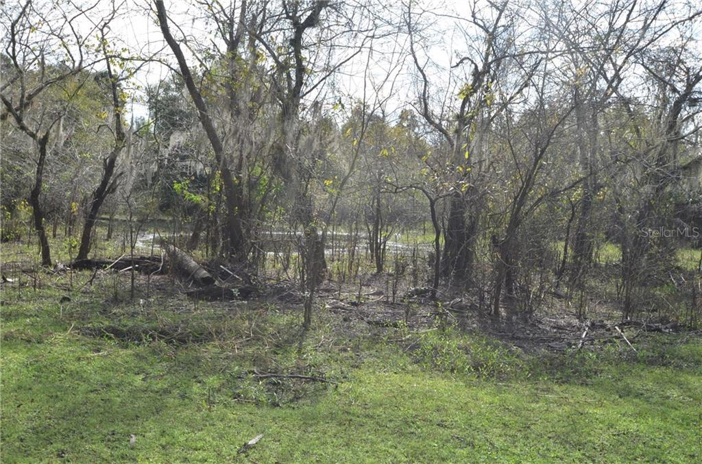 Vacant Land for sale at Co Road 760, Arcadia, FL 34266 - MLS Number is C7407993